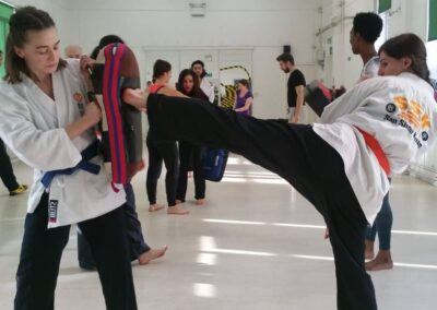 Students one year from Novice working on their side kicks